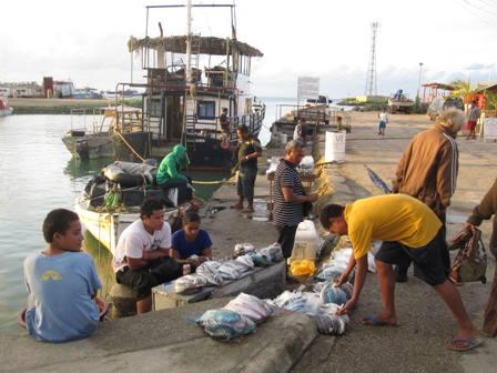 Reef Fish for Sale in downtown Nukuaolofa, Tonga