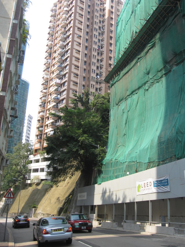 Bamboo Scaffolding on LEED Building.walk from Happy Valley Sports Ground area to Victoria Park (1)