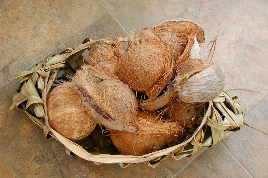 Basket of coconuts from the market