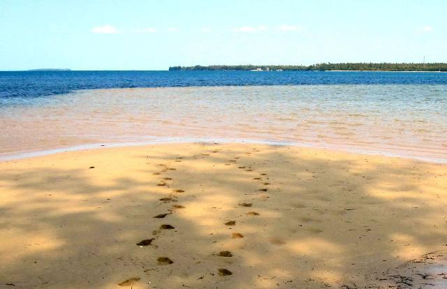 Our private beach on Manima Island, Tonga.Tonga Time