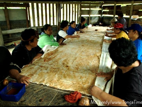 How to Make Tongan Tapa Cloth (Ngatu)