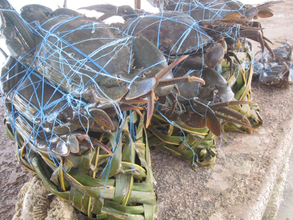 Baskets of crab sold at the Nuku'alofa fish market