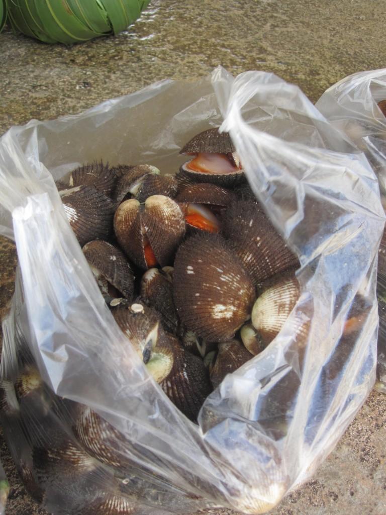 Bag of Shellfish