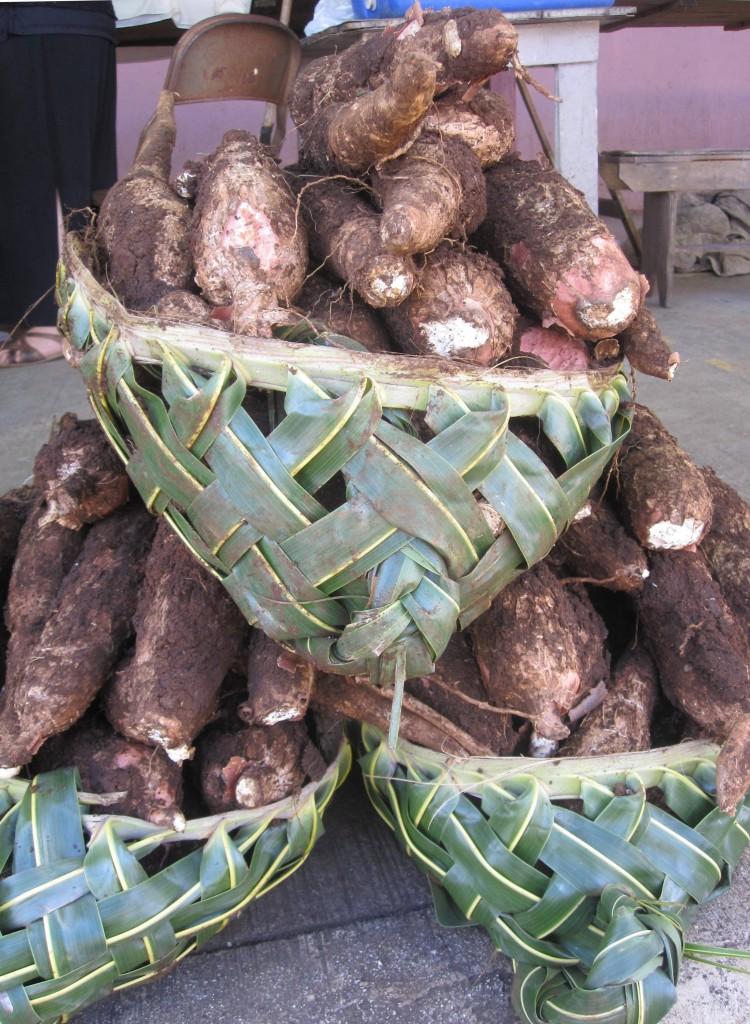 Baskets of Manioke
