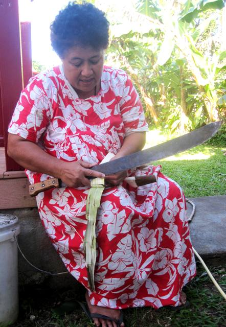 Separating bark from paper mulberry shoot.Tapa Making in Tonga