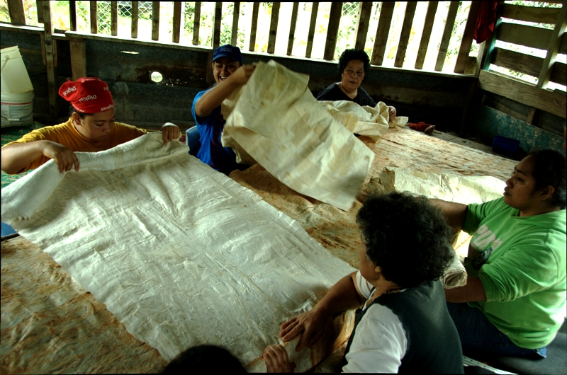 Unfurling fresh sheets of tapa cloth to join together