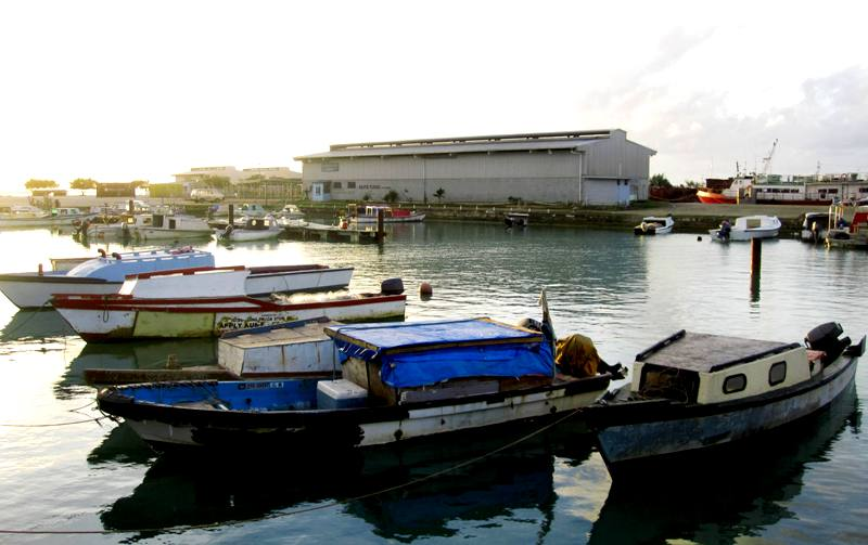 Domestic Wharf, Nuku'alofa (building behind boats holds the Fish and Chips restaurant (Eua Ferry Terminal and Pacific Sunrise Fresh Fish are in the back)
