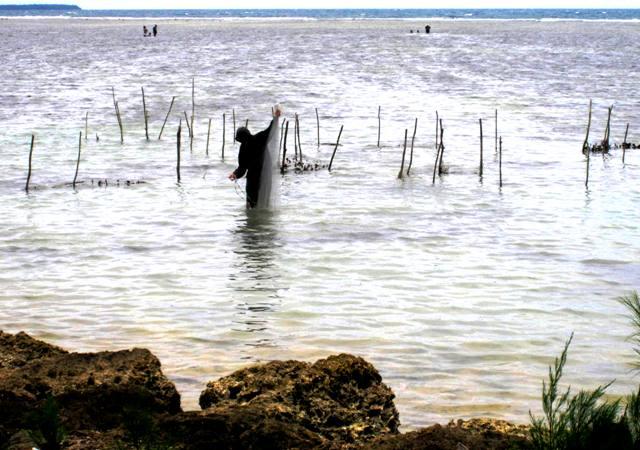 Fisherman along Vuna Road.Tongatapu.Tonga