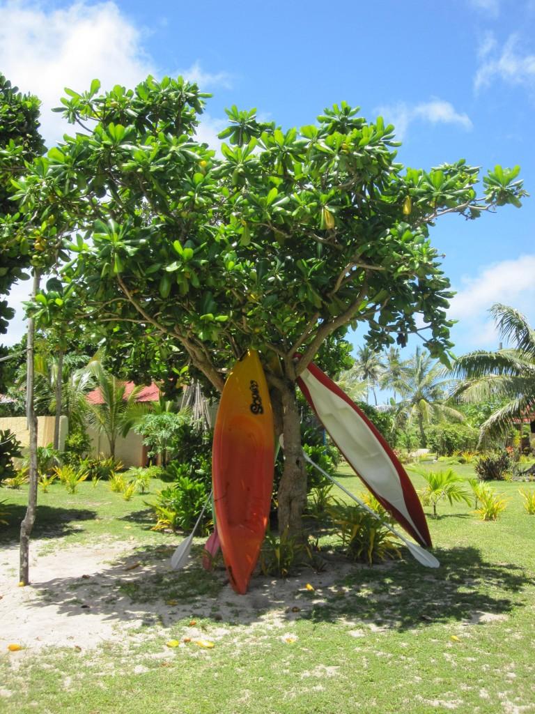 Vakaloa Resort Beach Grounds