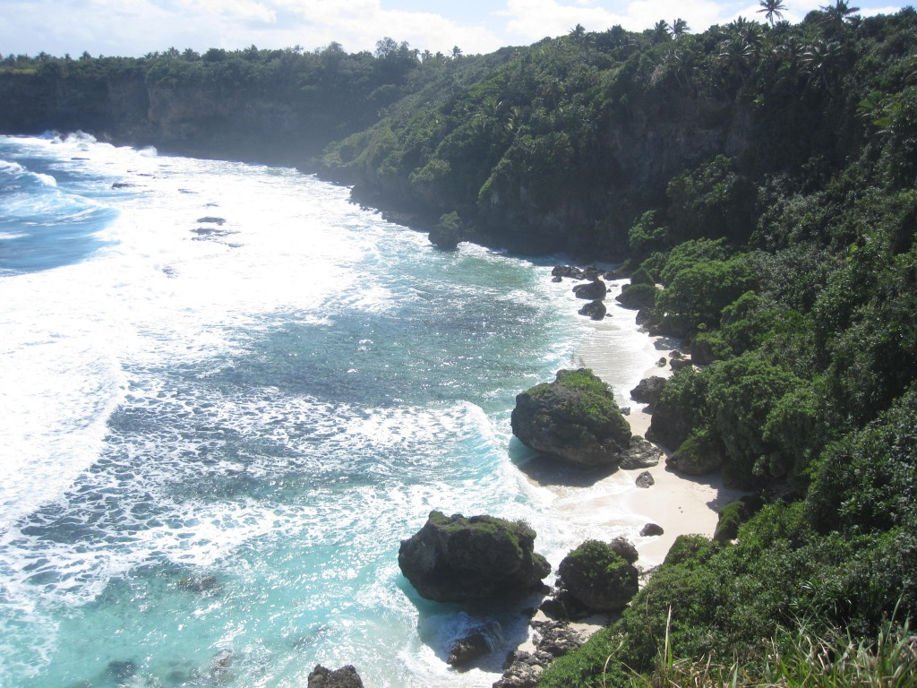 View from Cliffs by Natural Land Bridge