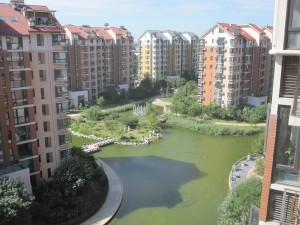 View of our apartment complex's interior grounds