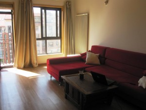 Furnished Living Room (laptop not included!)