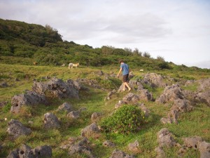 Hike through Rock Garden and Feral Horses, 'Eua (Tonga)