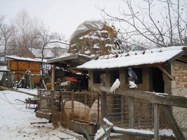 Urca Farm in December 2011 Romania