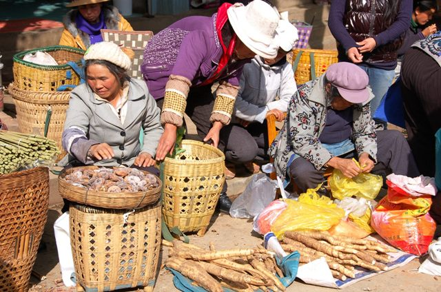 Shaxi market. Women selling roots (I'm not sure what kind) and, I believe, dried persimmons.