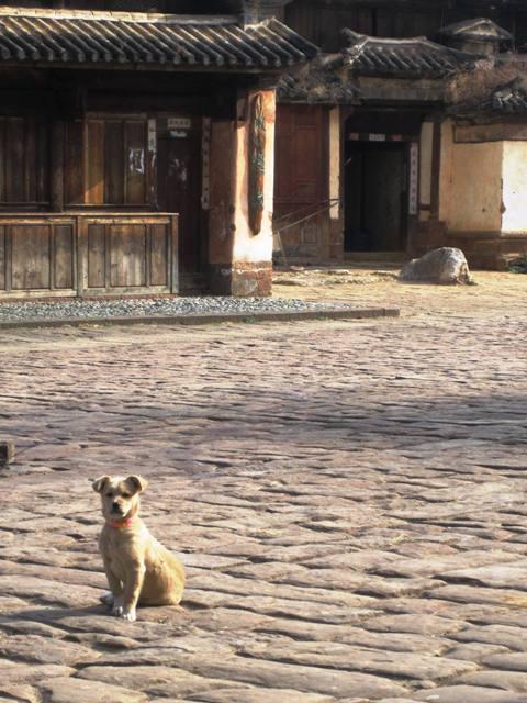 Shaxi Old Town Square, Yunnan Province, China