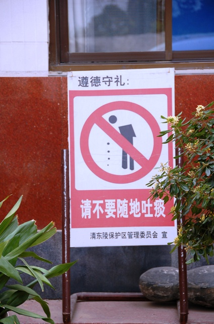 No Spitting (And this is posted, incidentally, just outside a restaurant.)