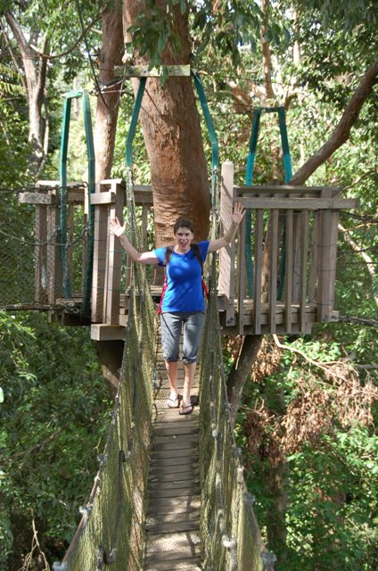 Darwin Award Contender: Look! No hands! (This is <em>not</em> recommended as the bridges do swing a bit.)
