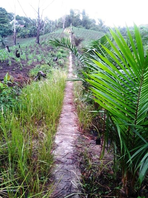 Sidewalks, Balikpapan Style!