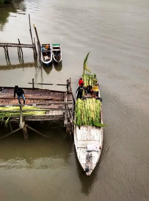 Loading Palm Leaves for Pasar (below bridge). Penajam, Indonesia