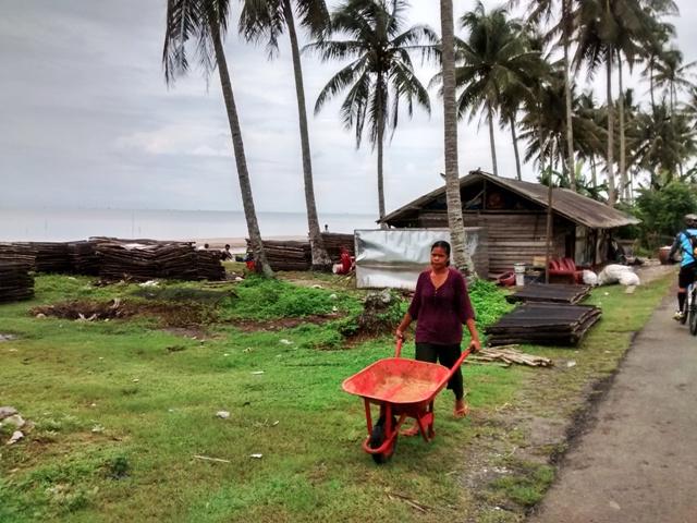 Woman with Wheelbarrow. Penajam, Indonesia