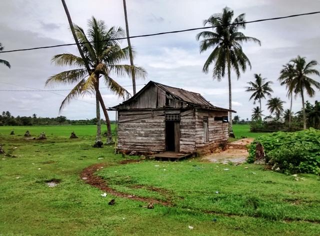 House on Rice Fields. Penajam, East Kalimantan, Indonesia