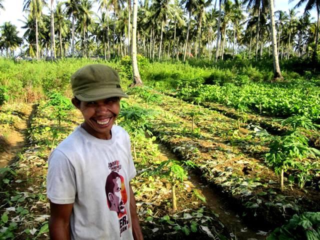 Tapioca (singkong) and water spinach (kangkung) farmer