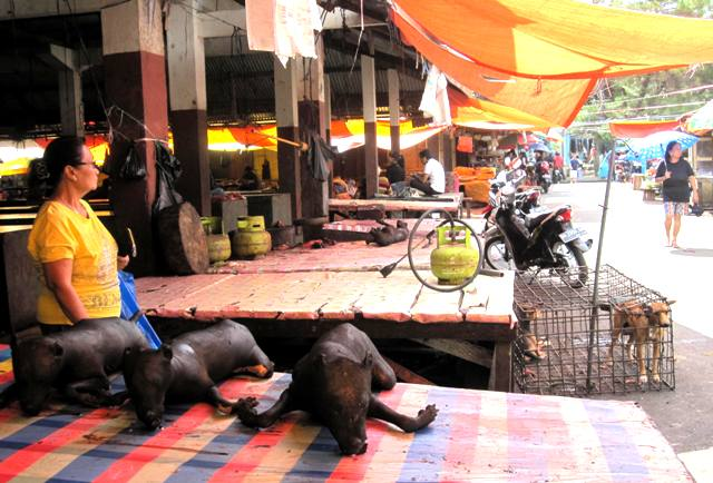 Grilled dogs for sale at Tomohon Market