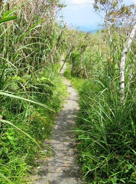 Path along Mahawu volcano