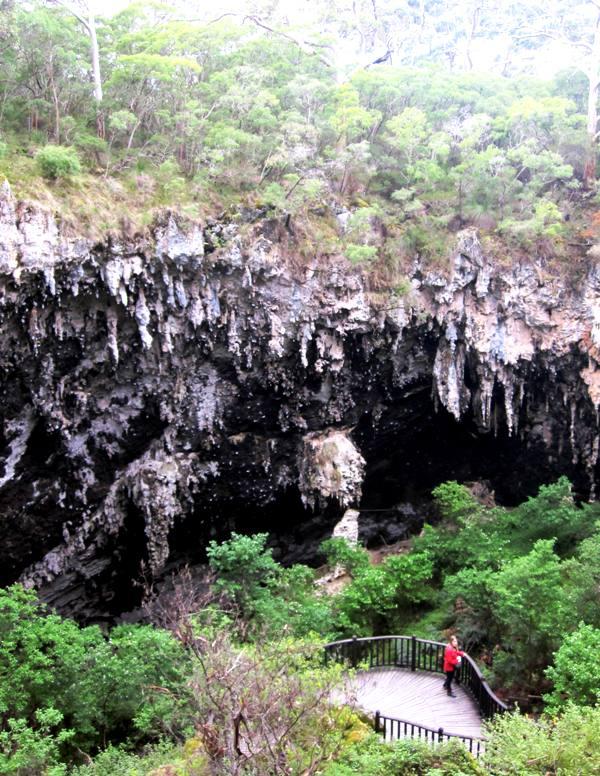 Lake Cave.Cave Road.Western Australia