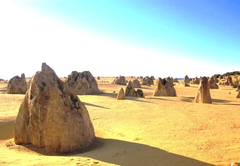 Late afternoon at Pinnacles Desert Park