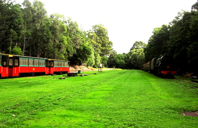 Pemberton Train and Trolley.Western Australia