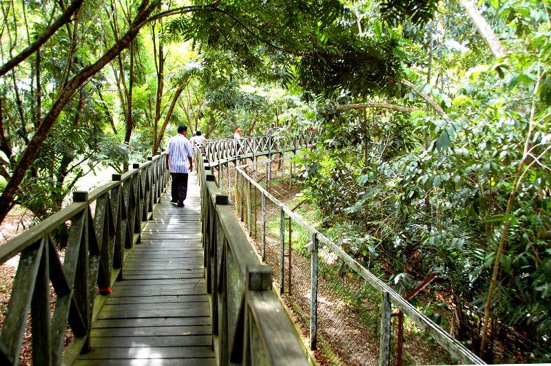 Perimeter walk.Sun Bear Sanctuary.Balikpapan Kalimantan Indonesia
