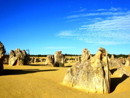 Pinnacles Desert Park.Western Australia