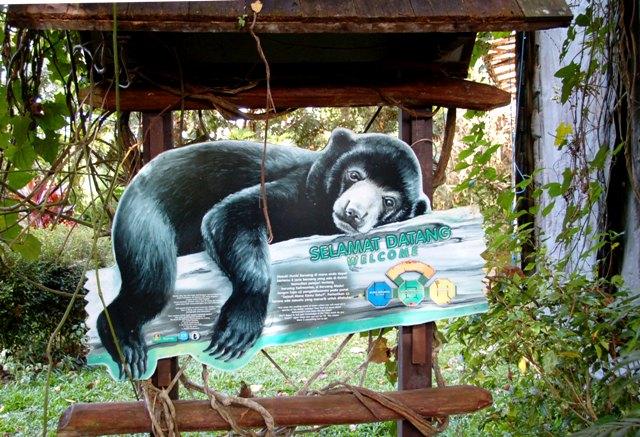 Selamat Datang ke Beruang Madu Kaltim