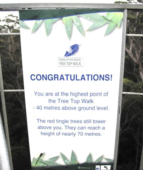 Valley of Giants.Treetop Walk.Walpole Australia