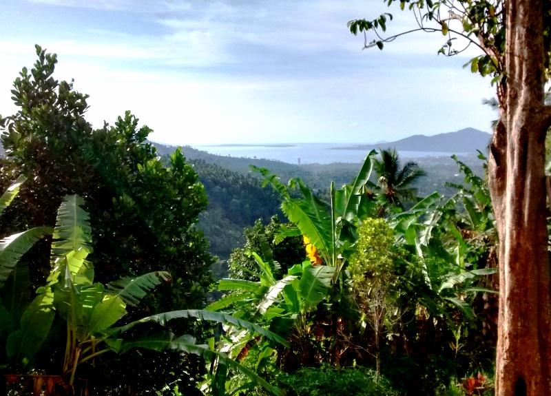 View of Sea from Kali Watefall Trailhead