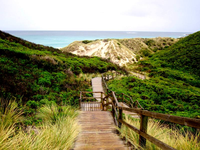 Walkway to Conspicuous Cliffs.Western Australia