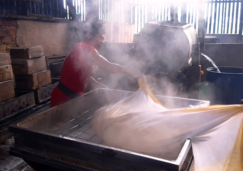Discarding soy pulp.Balikpapan tofu factory