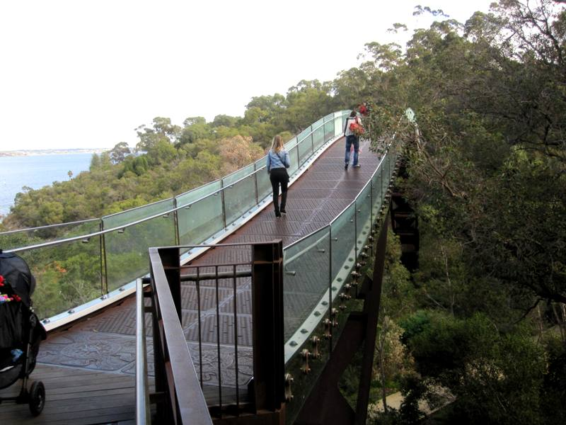 Federation Walkway.Kings Park.Perth Australia