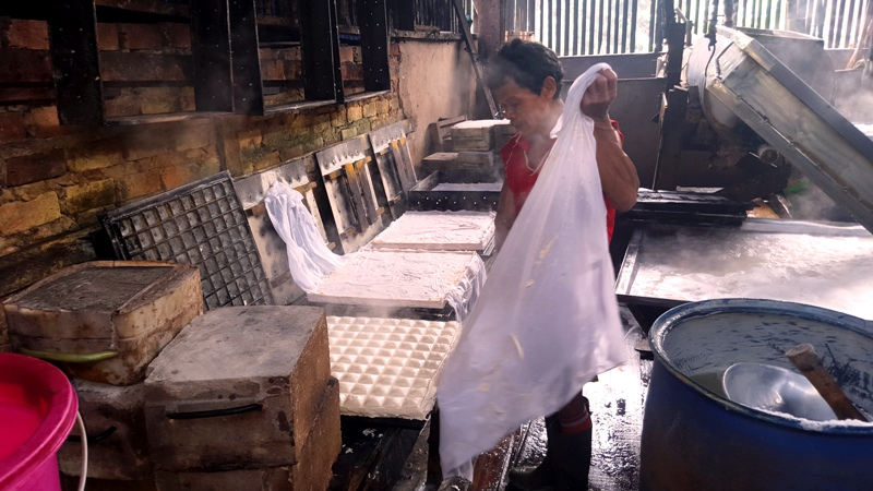 Lifting cheese cloth from pressed tofu.Indonesia tofu factory
