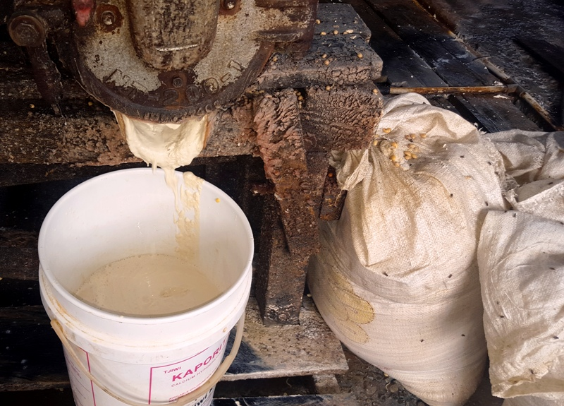 Paste of ground soy beans and water.Balikpapan, Indonesia Tofu Factory