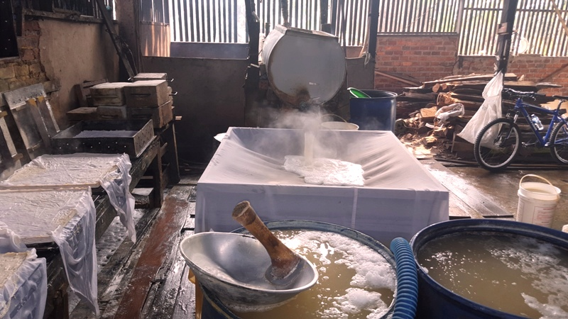 Pouring boiled tofu water into strainer. Balikpapan tofu factory, Indonesia