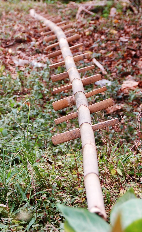 Bamboo Clove Picker Ladder. Munduk, Bali