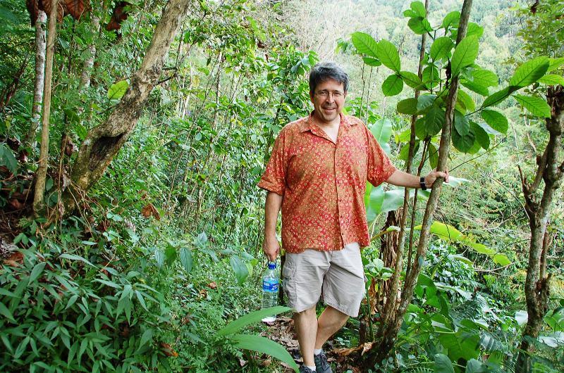 Forest Path to Munduk Watefall.Bali
