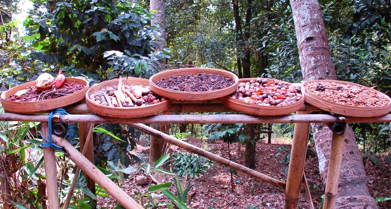 Munduk Spices.Bali Indonesia