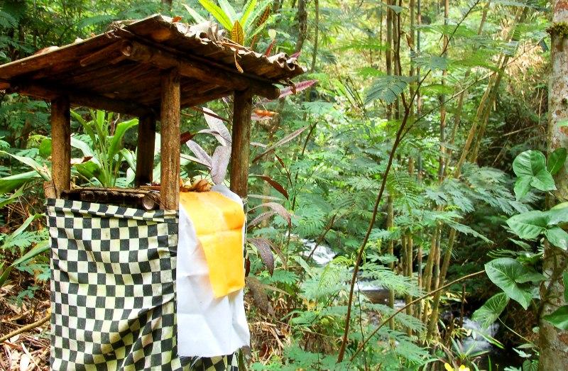 Offering alter by river.Munduk Bali