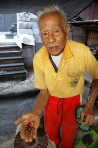 Bali coffee: Pak Beni showing fresh coffee cherries