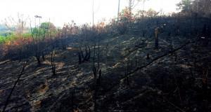 Indonesia air pollution from slash and burn land clearing.Balikpapan