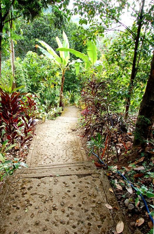 Stairway leading to waterfall from entranceway.Munduk Bali